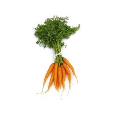Džiovintos morkos